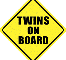 Twins on Board Sticker Decal