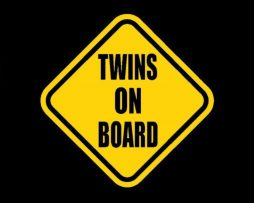 Twins on Board Stickers