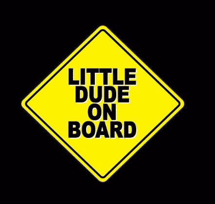 Little Dude on Board