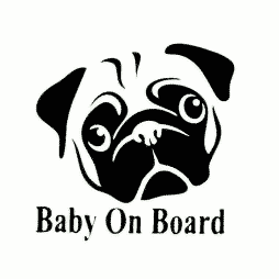 Pug Baby on Board Sticker