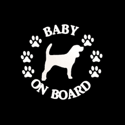 Baby Beagle on Board Sticker