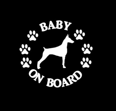 Baby Doberman Pinscher on Board Sticker