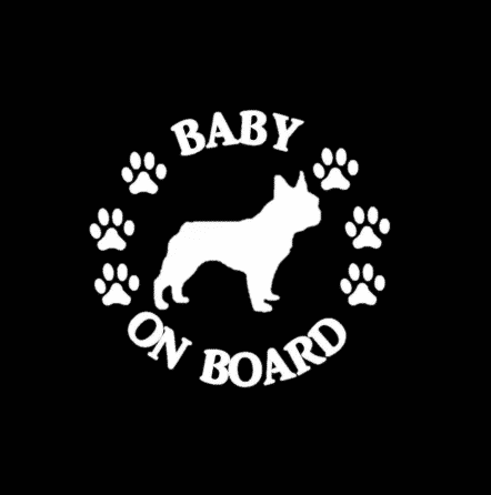 Baby French Bulldog on Board Sticker