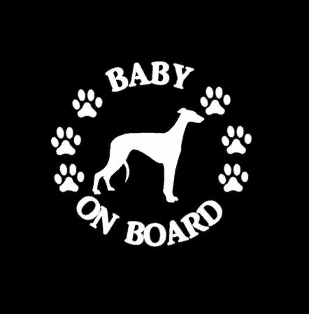 Baby Greyhound on Board Sticker