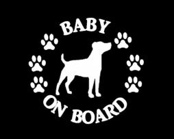 Baby Jack Russell on Board Sticker