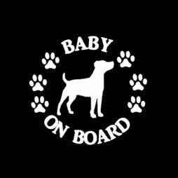 Baby Jack Russell on Board Sticker