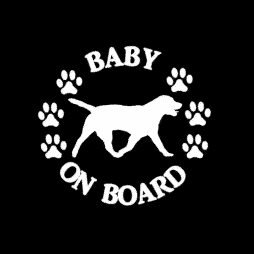 Baby Labrador Retriever on Board Sticker