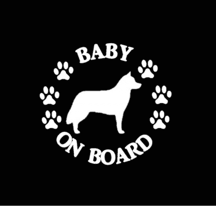Baby Siberian Husky on Board Sticker