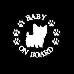 Baby Yorkie on Board Sticker