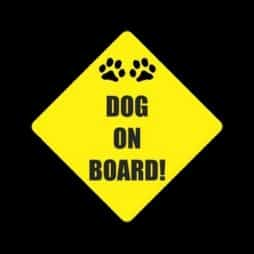 Dog on Board Sticker Decal