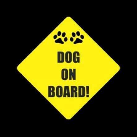 Dog on Board Sticker Decal