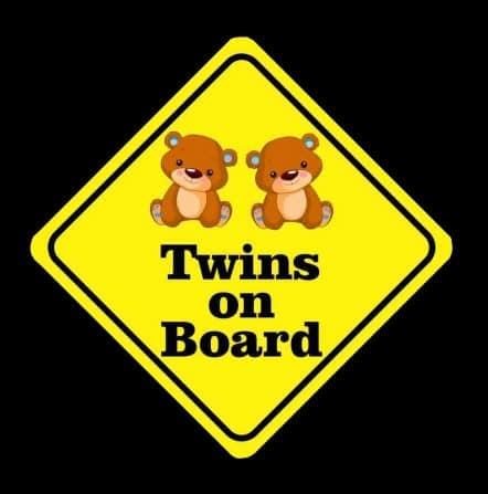 Baby Bear Twins On Board Sticker