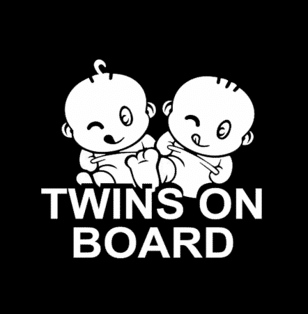 Rugrats Twins On Board Sticker