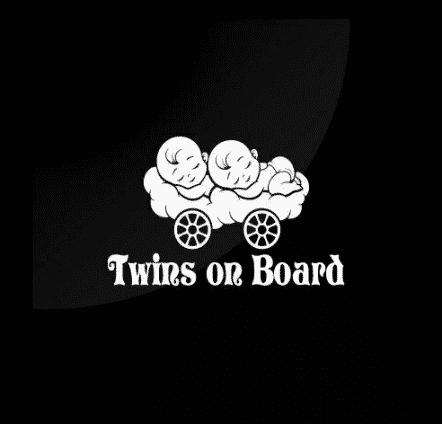 Sleeping Twins On Board Sticker